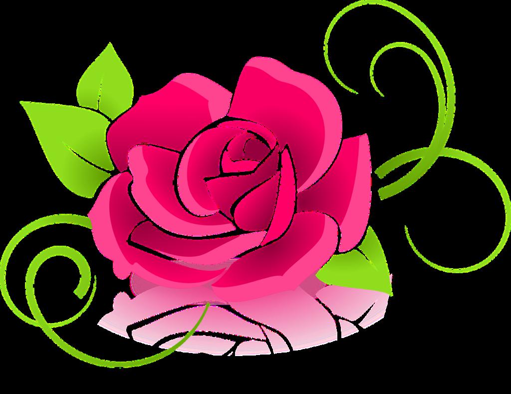 rose, graphic, flower-398576.jpg